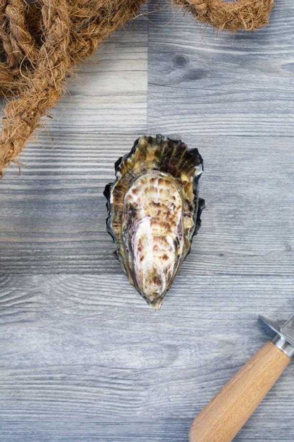 Huîtres creuses de Cancale 2