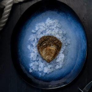 Huître plate de Cancale 3