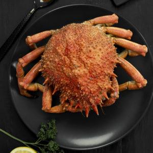 araignée de mer femelle cuite