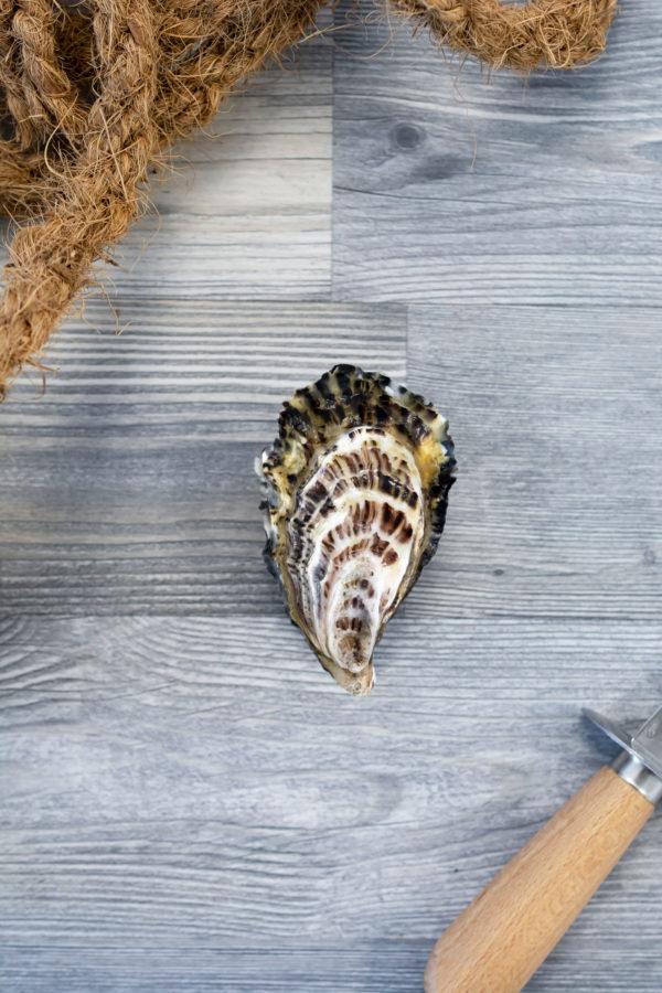 Huîtres creuses de Cancale 4