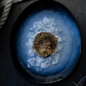 Huître plate de Cancale 4
