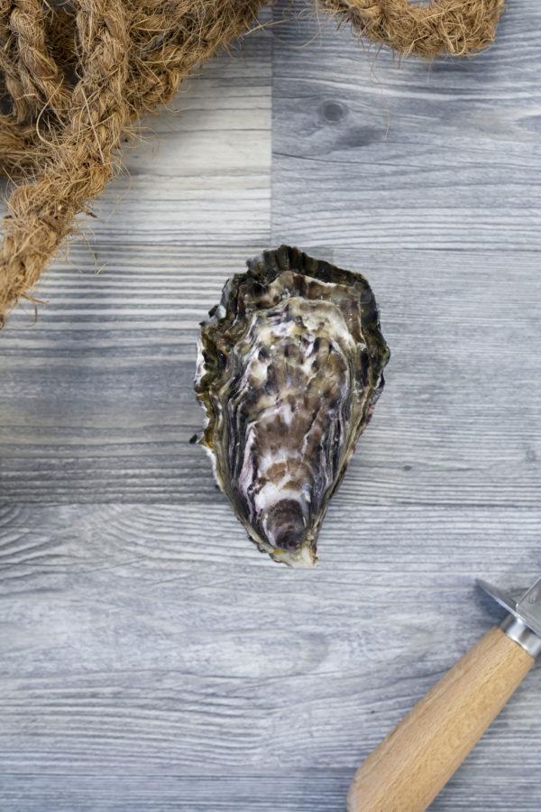 Huîtres creuses de Cancale 1