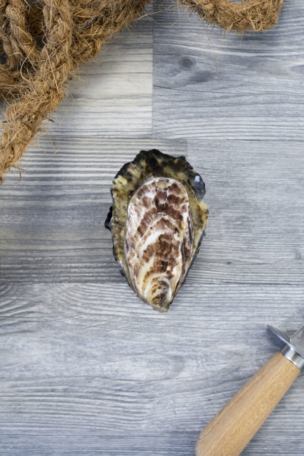 Huîtres creuses de Cancale 3